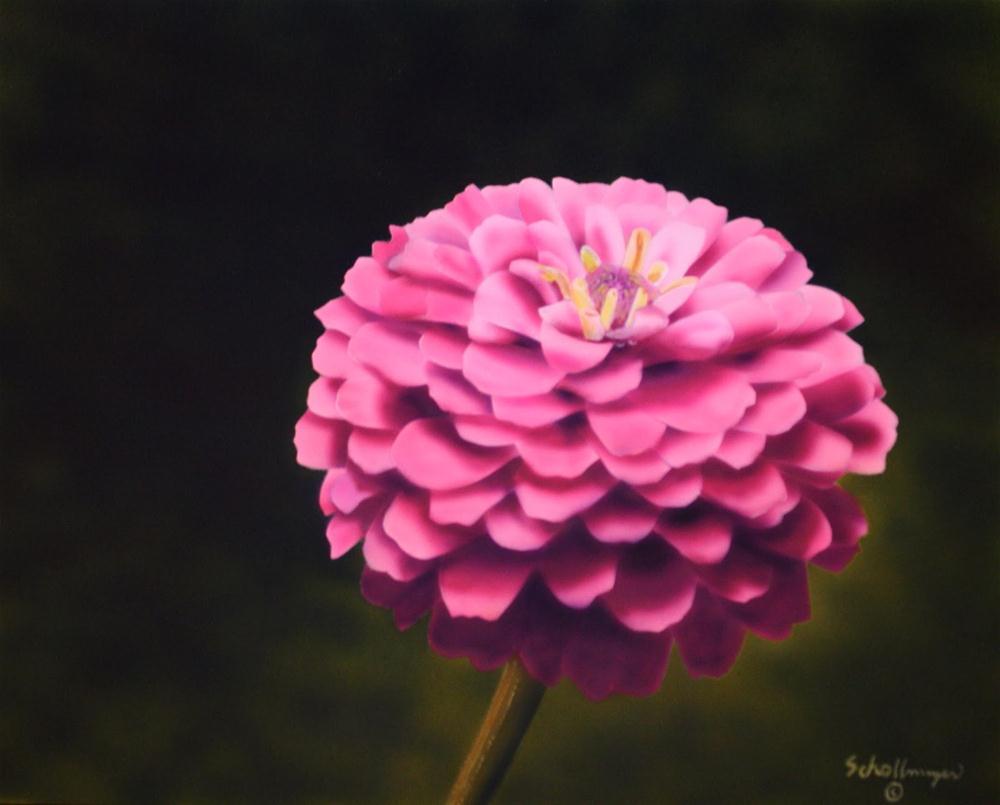 """Beautiful Bloomer"" original fine art by Fred Schollmeyer"