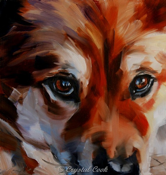"""Keen Sight"" original fine art by Crystal Cook"