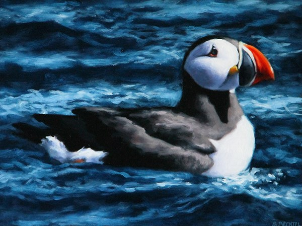 """Atlantic Puffin"" original fine art by Sarah Becktel"
