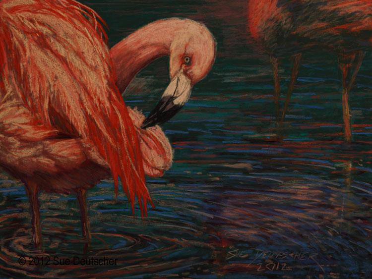 """""""Flamingo"""" original fine art by Sue Deutscher"""