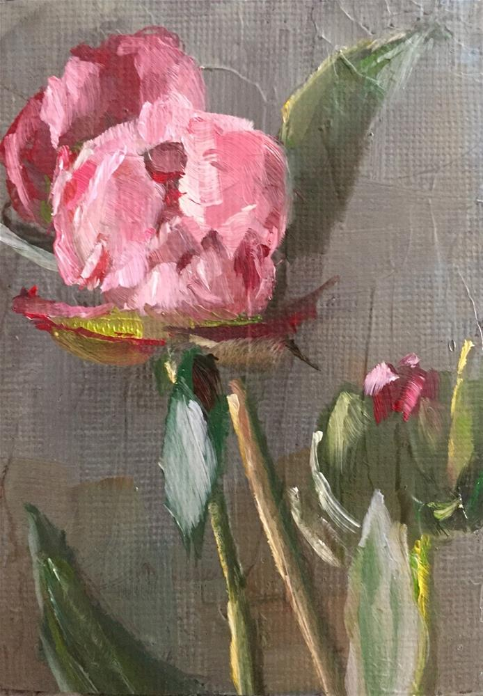 """Peonies"" original fine art by Gary Bruton"