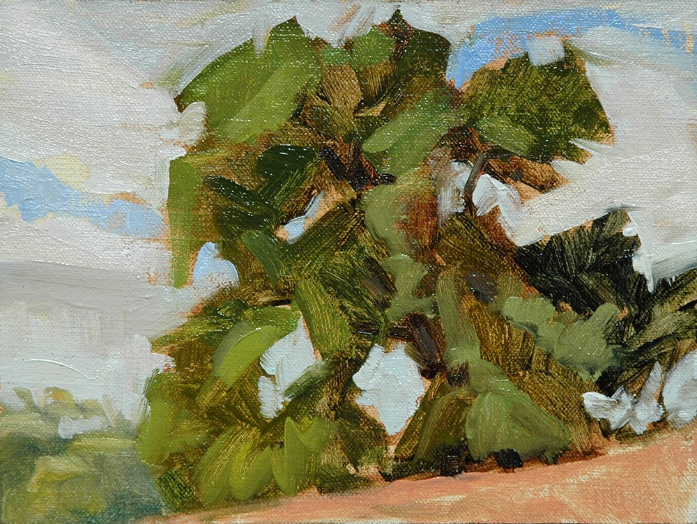 """Las Golondrinas Tree Study"" original fine art by Miriam Hill"