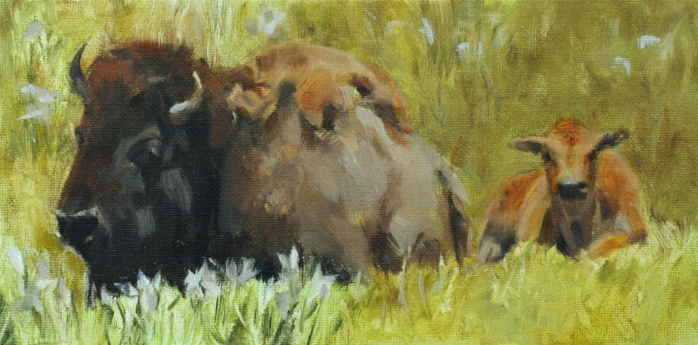 """Baby Bison (framed)"" original fine art by Pamela Poll"