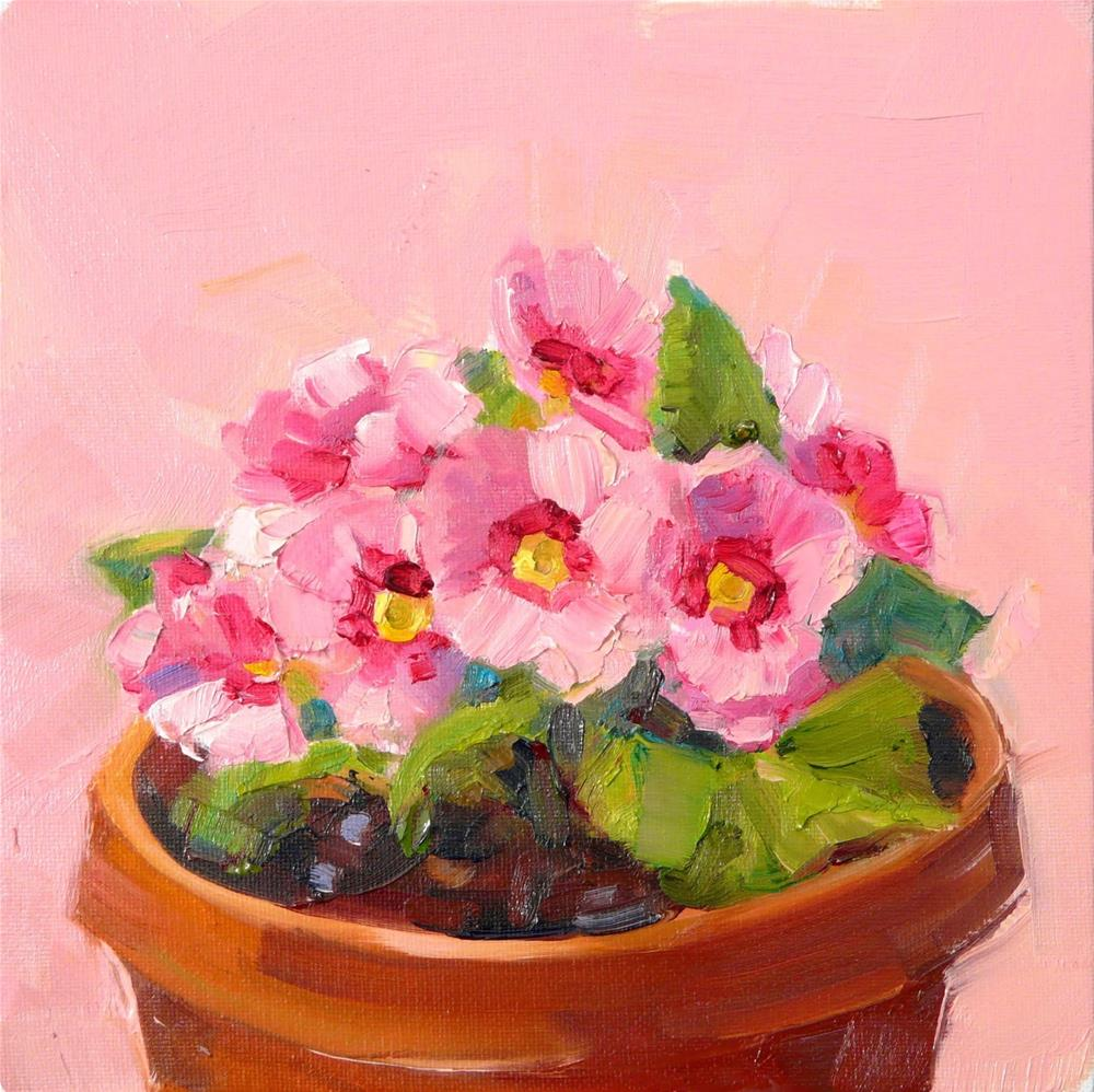 """Pink Primrose in Pot,still life,oil on canvas,8x8,price$250"" original fine art by Joy Olney"