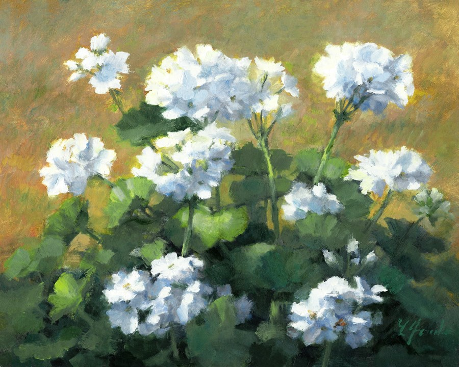 """Geraniums in White"" original fine art by Linda Jacobus"