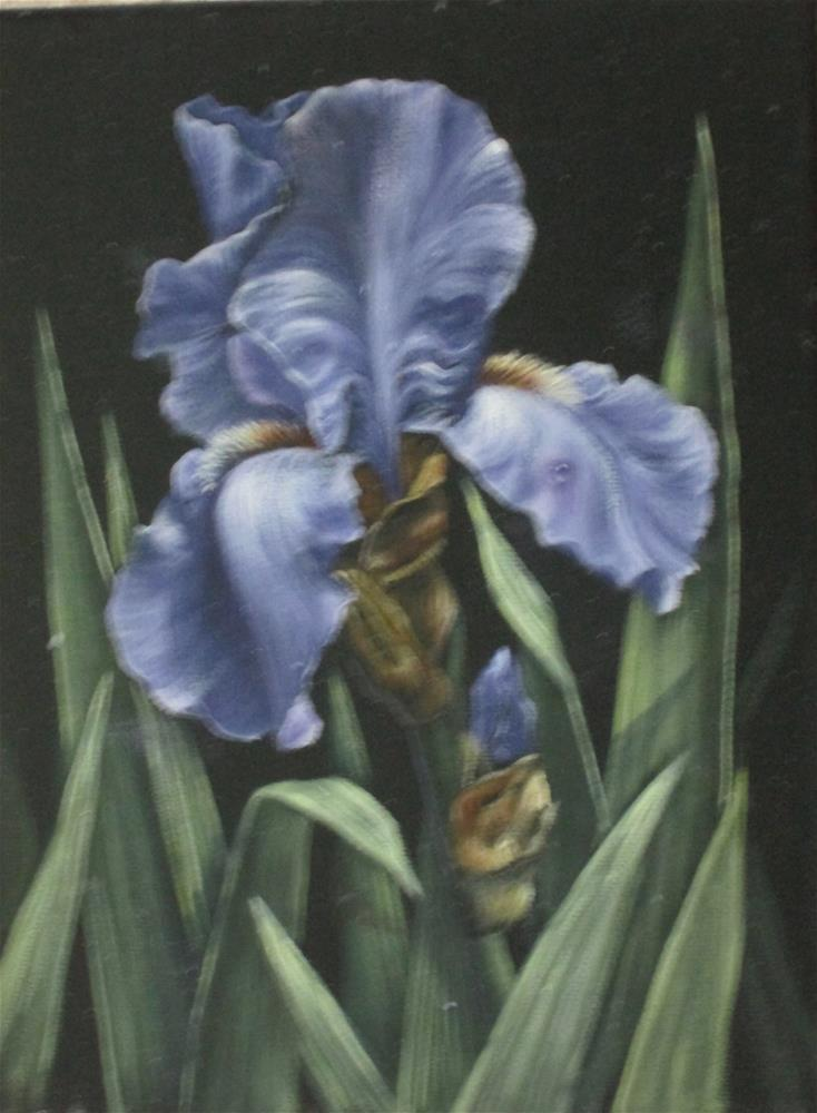 """Purple Iris"" original fine art by Barbara Wagner"
