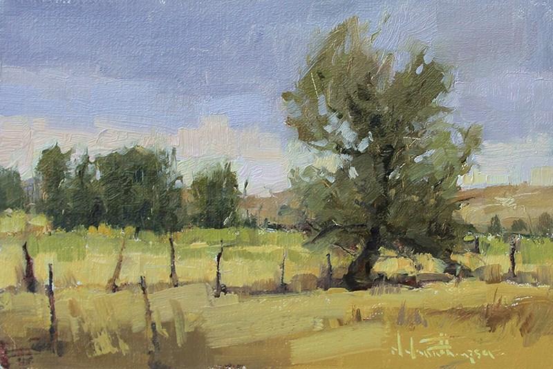 """""""Rural Greys"""" original fine art by Melanie Thompson"""