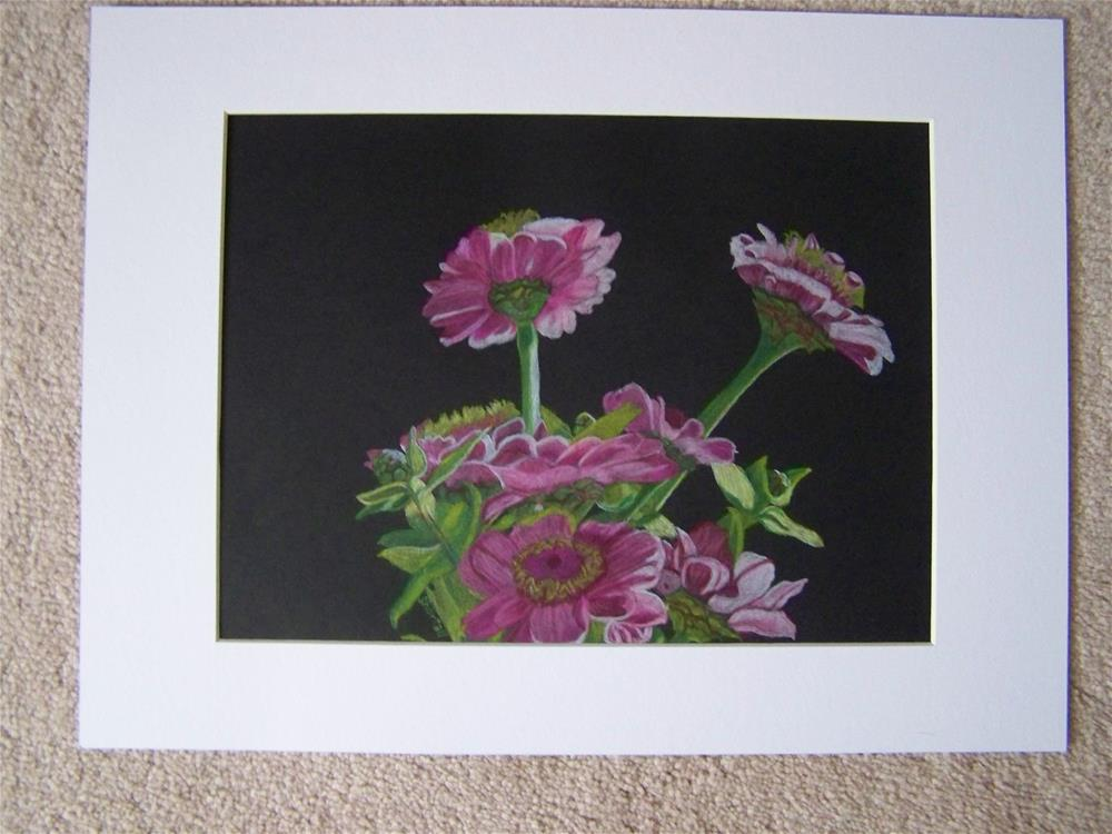 """""""Pink Zinnias"""" original fine art by Elaine Shortall"""