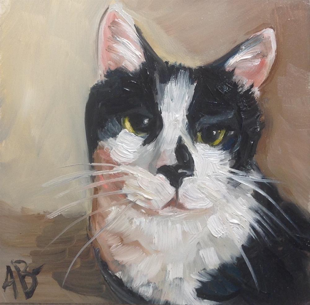 """""""Black and White Cat"""" original fine art by Annette Balesteri"""