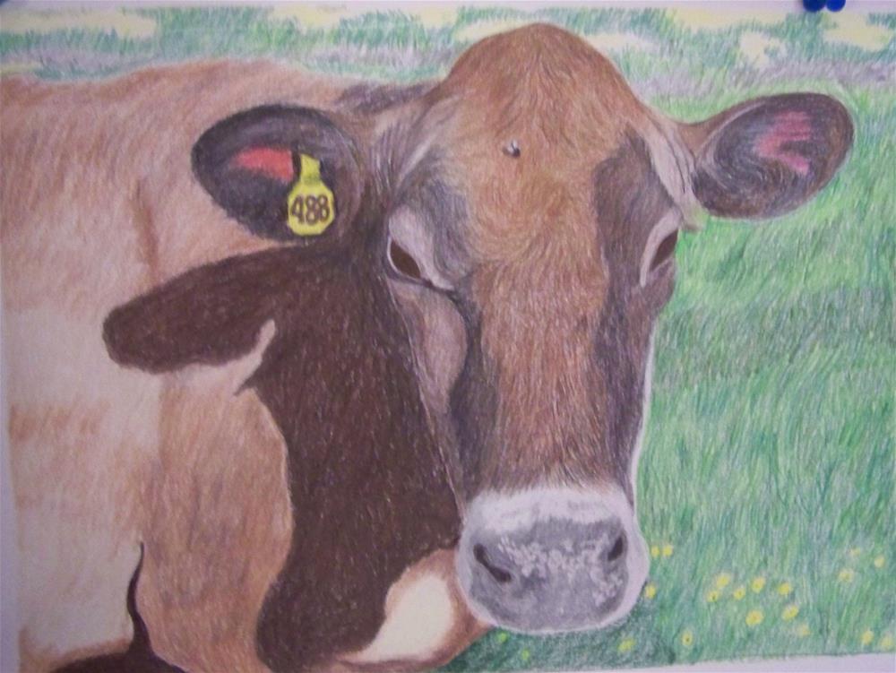 """""""Jersey Cow 1"""" original fine art by Elaine Shortall"""
