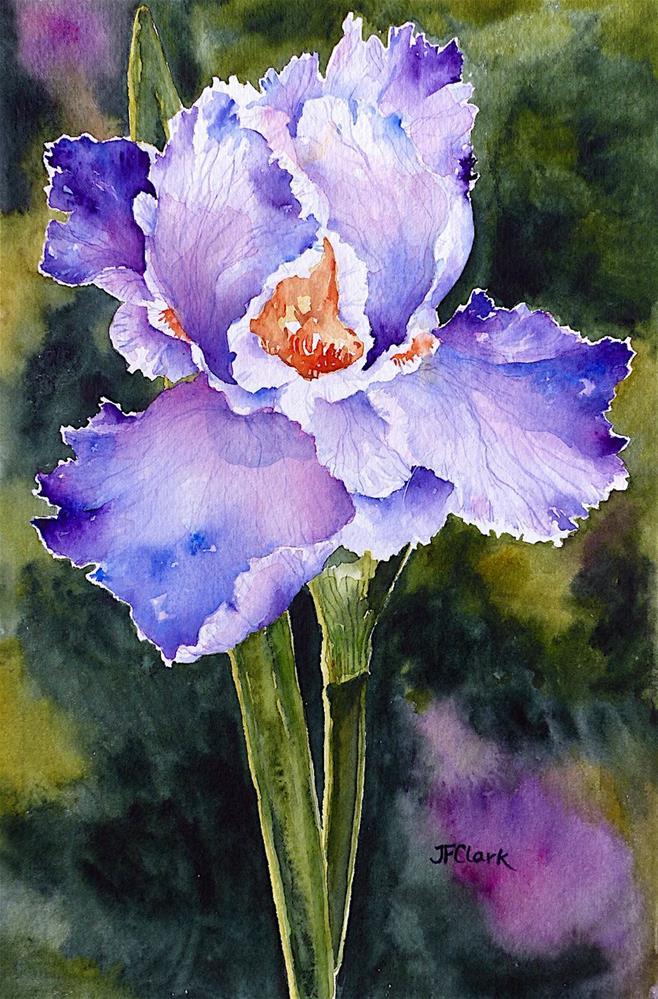 """Flirty Iris"" original fine art by Judith Freeman Clark"