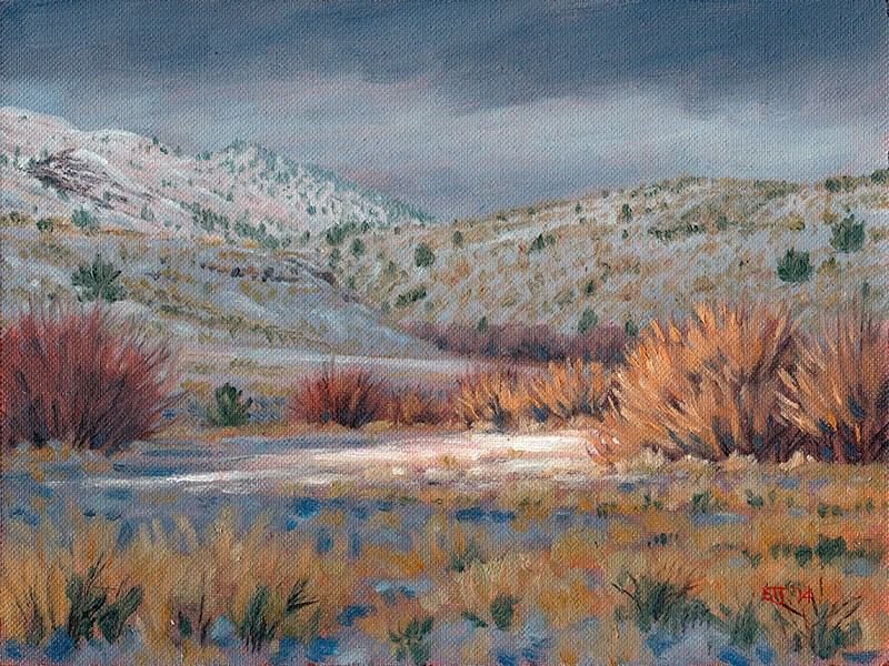 """C1582 Winter Willows"" original fine art by Steven Thor Johanneson"