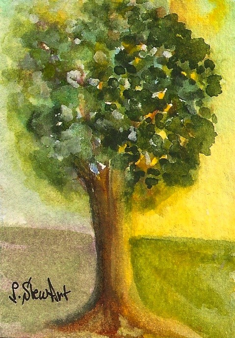 """ACEO Light and Shadow, Tree in bright sunlight Watercolor Art by Penny StewArt"" original fine art by Penny Lee StewArt"