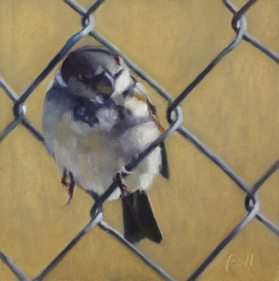 """Suburban Sparrow"" original fine art by Pamela Poll"