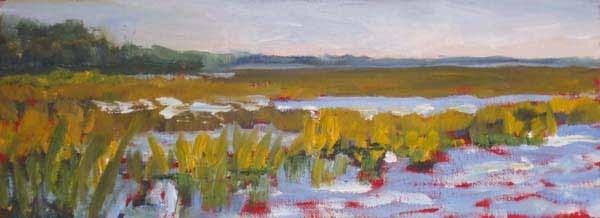 """James Island Marsh"" original fine art by Lucinda Howe"