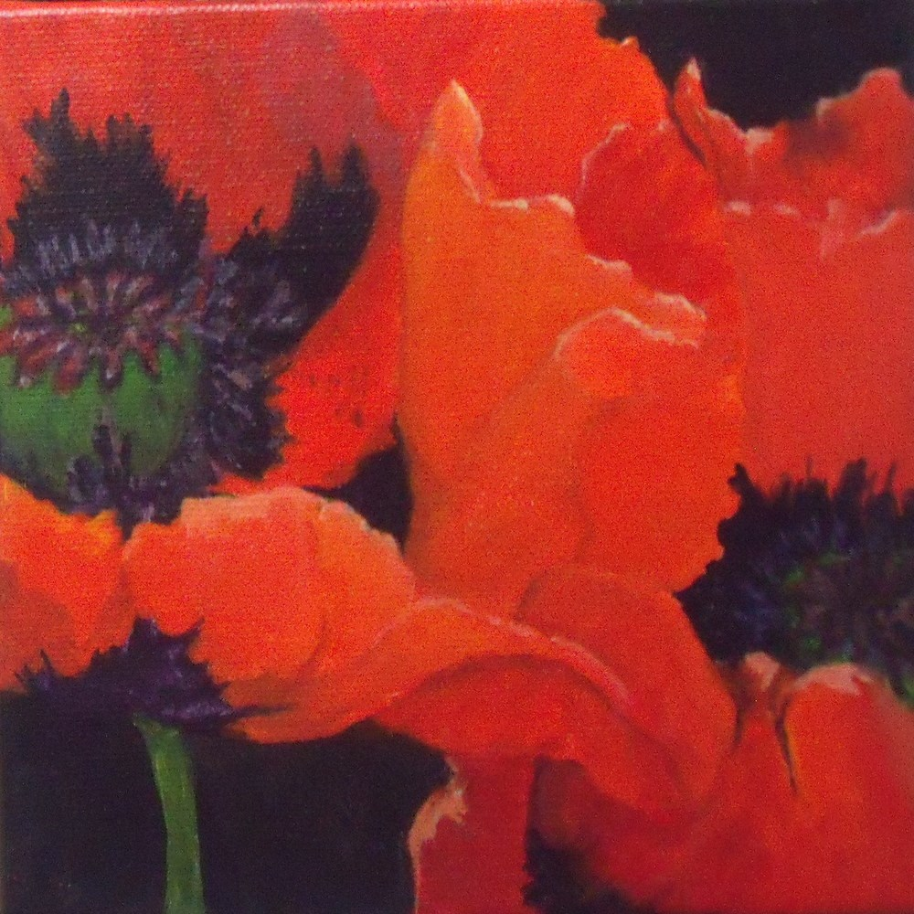 """Poppy Twins"" original fine art by Nelvia  McGrath"