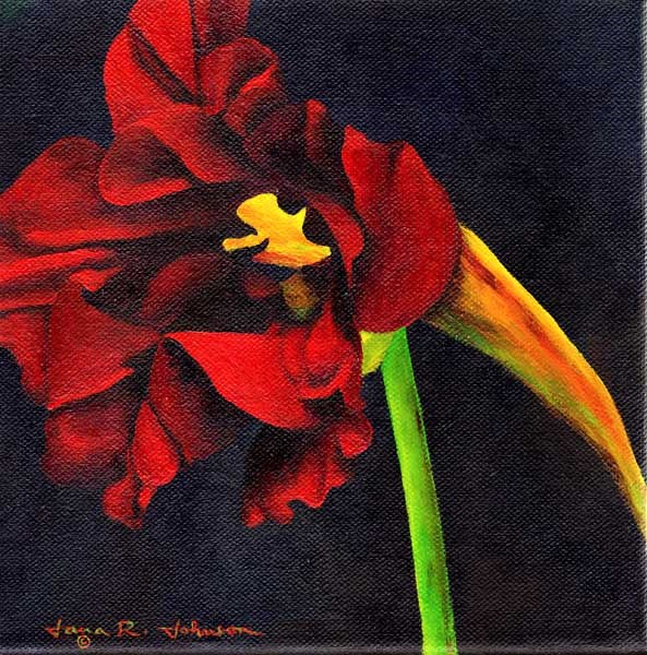 """Nasturtium"" original fine art by Jana Johnson"