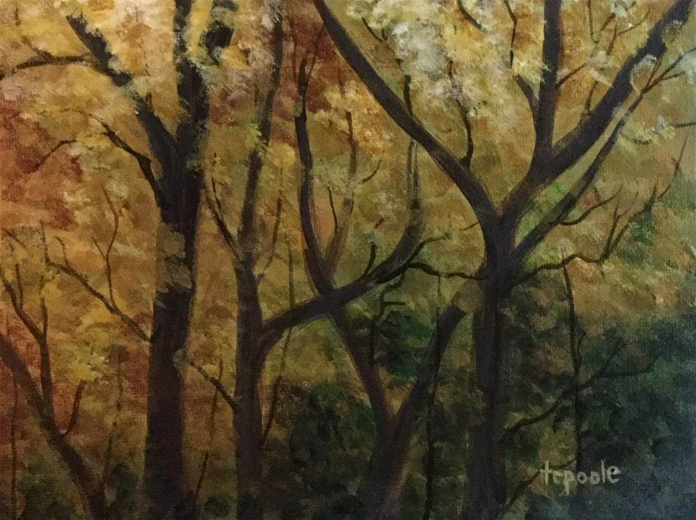 """""""Changing Canopy"""" original fine art by T.C. Poole"""