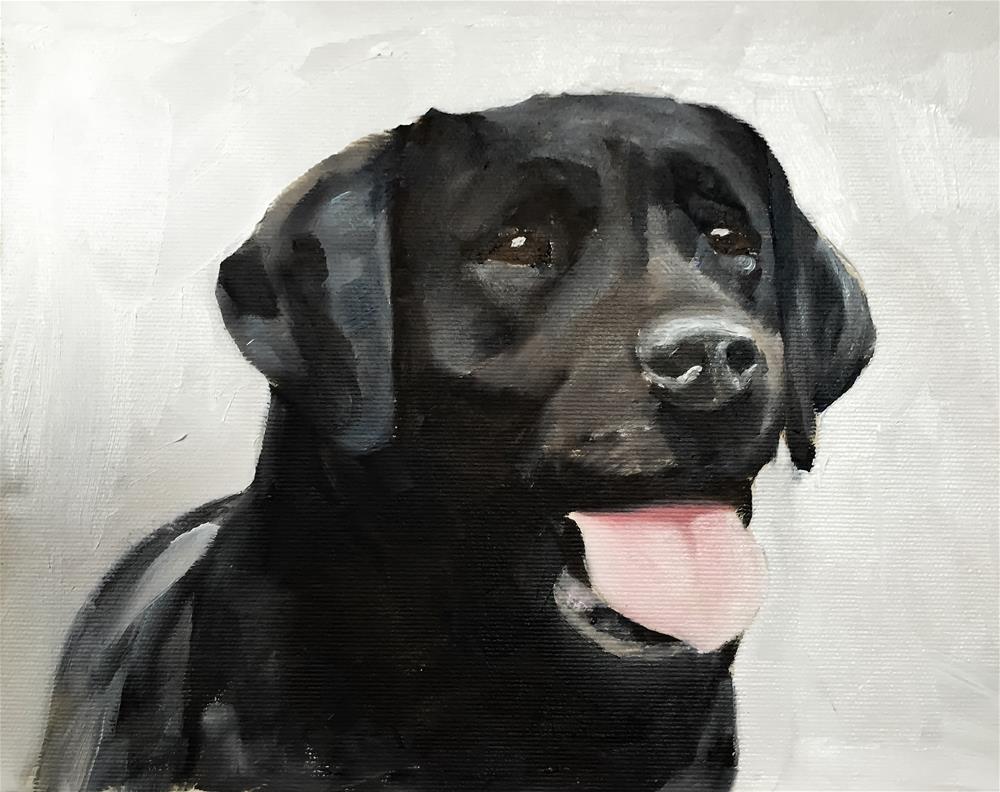 """""""Labrador"""" original fine art by James Coates"""