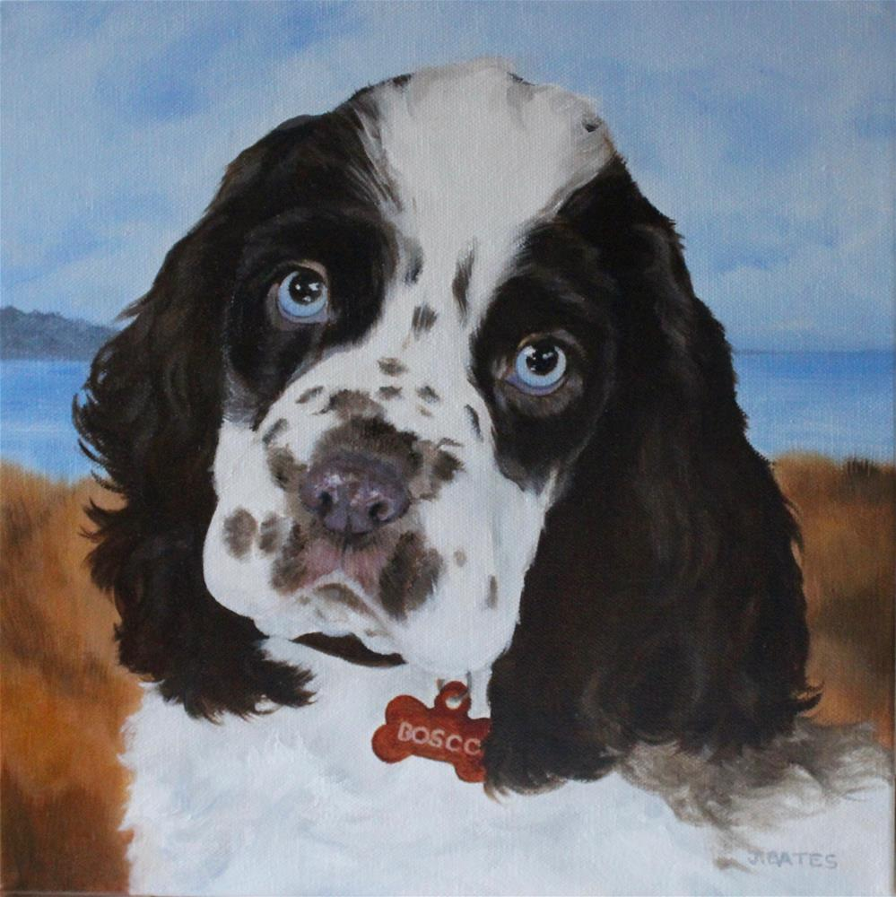 """Boscoe"" original fine art by Jill Bates"