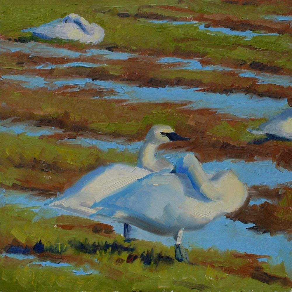 """Swan's in Skagit Valley"" original fine art by Susan McManamen"