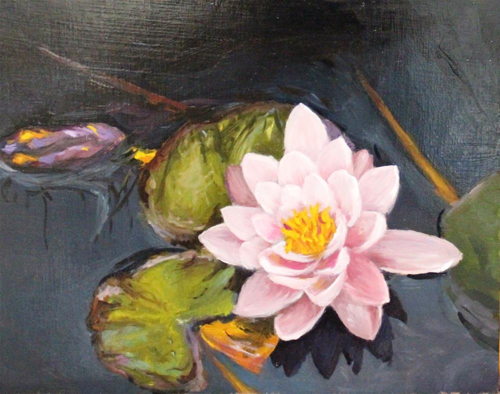 """""""waterlily"""" original fine art by Marco Vazquez"""