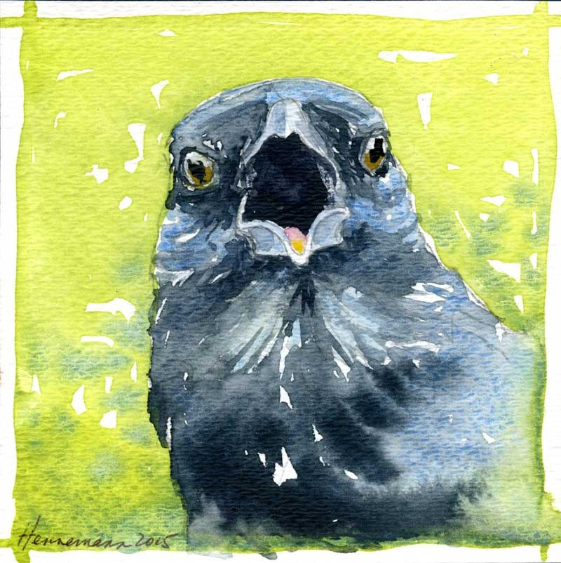 """Crow No. 1"" original fine art by Eileen Hennemann"