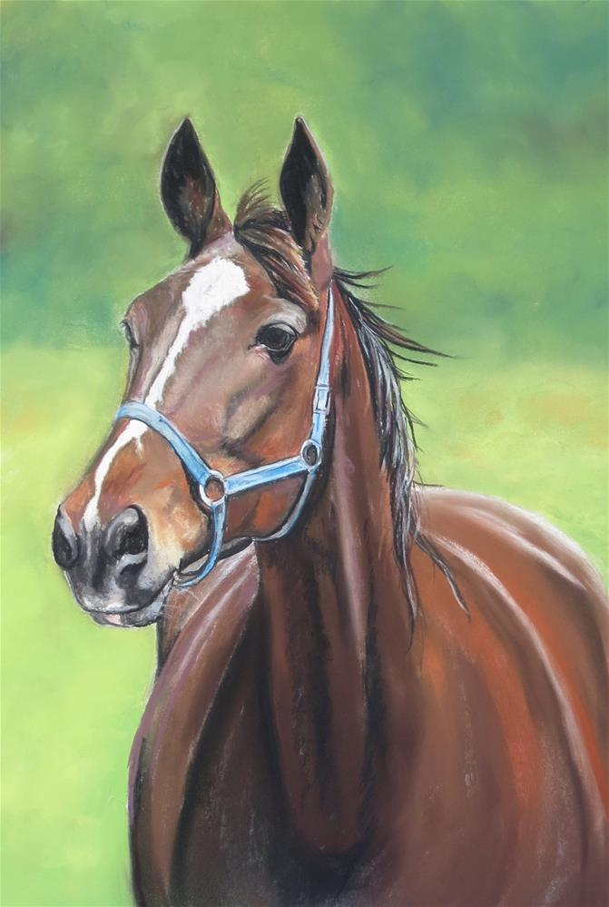 """Hanover Horse"" original fine art by Charlotte Yealey"
