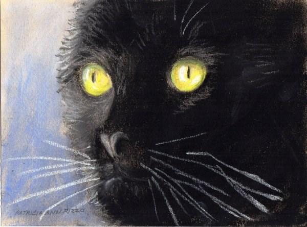 """""""Midnight"""" original fine art by Patricia Ann Rizzo"""