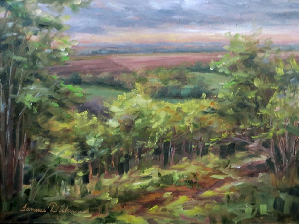 """Moody Montelle Morning"" original fine art by Tammie Dickerson"