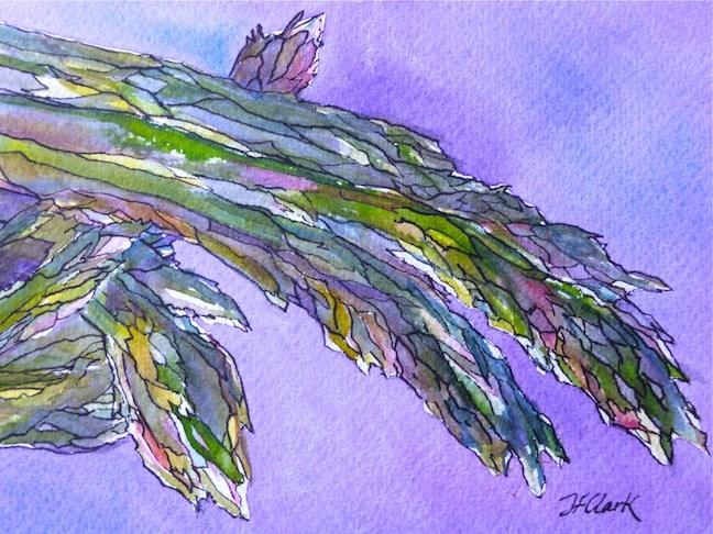 """A is for Asparagus"" original fine art by Judith Freeman Clark"