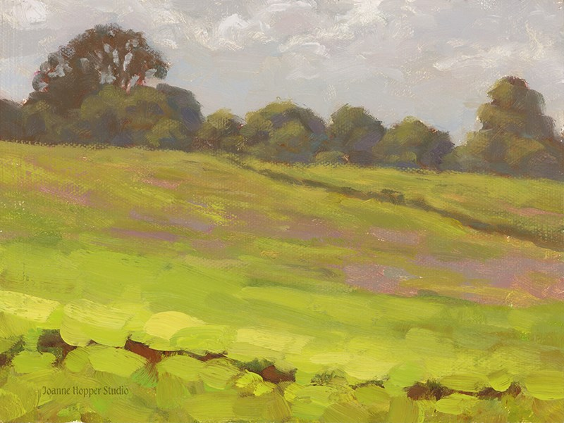 """""""Pi'iholo Field"""" original fine art by Joanne Hopper"""