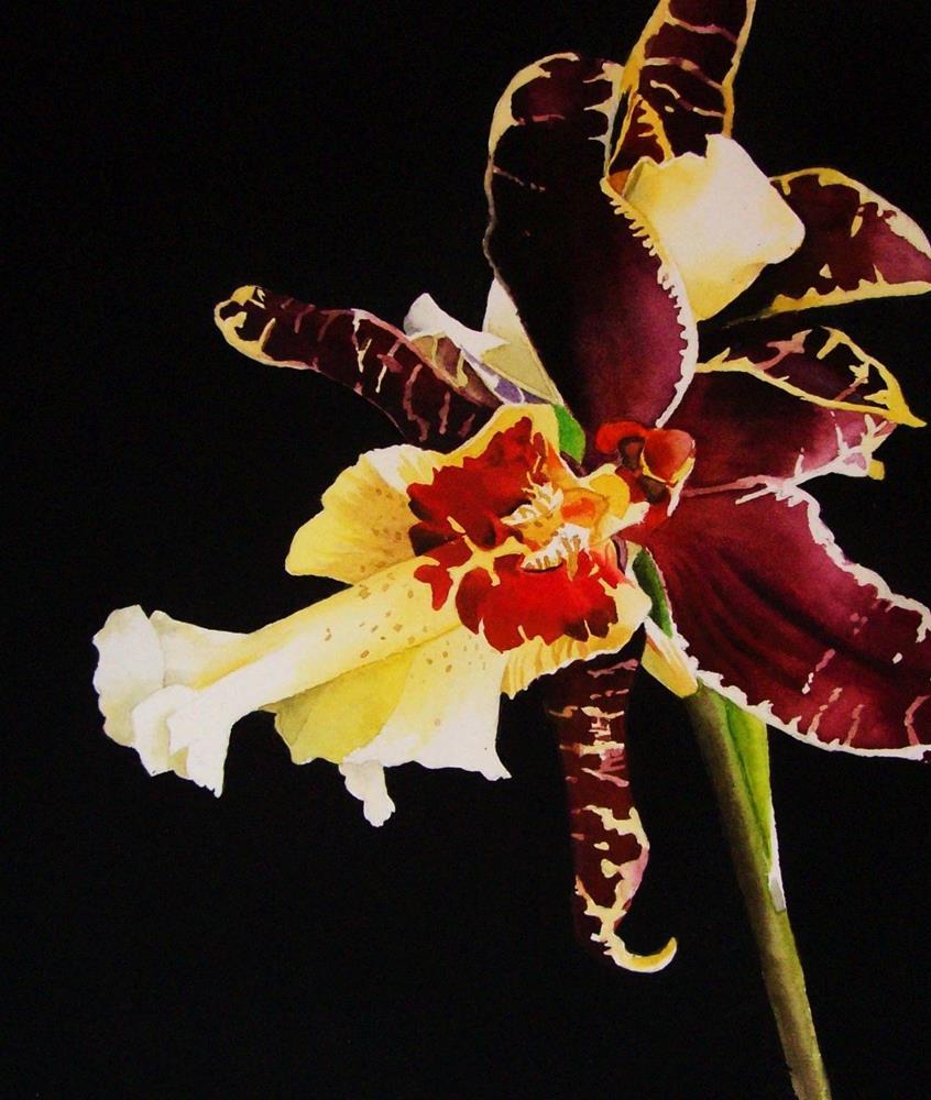 """Tiger Orchid"" original fine art by Jacqueline Gnott, whs"