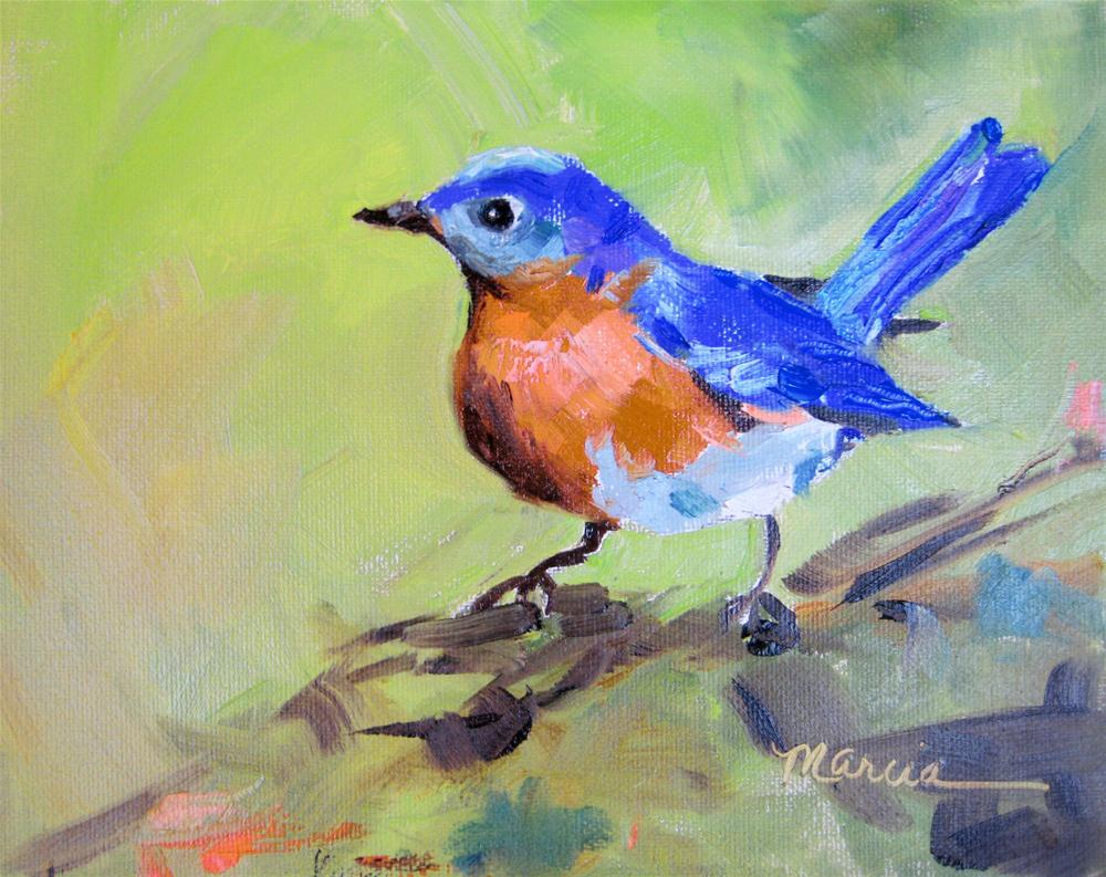 """Blue Bird"" original fine art by Marcia Hodges"