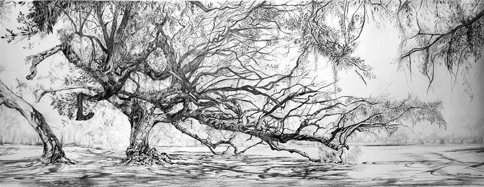 """Etienne de Bore Live Oak"" original fine art by Patti Adams"