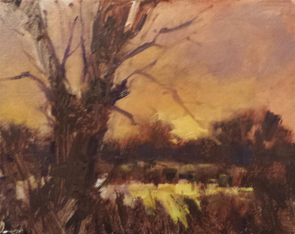 """Sunset I"" original fine art by John Shave"