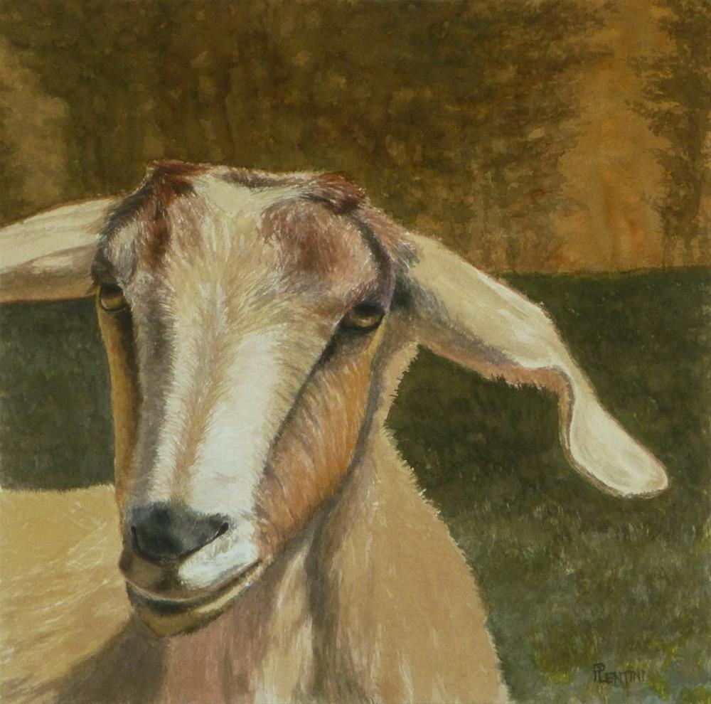 """Goat Series 1: All Ears"" original fine art by Peter Lentini"