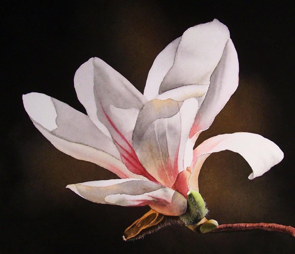 """Soft, Sweet Magnolia"" original fine art by Jacqueline Gnott, whs"