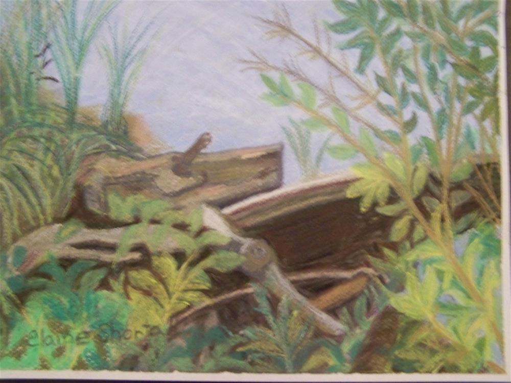 """At Water's Edge"" original fine art by Elaine Shortall"