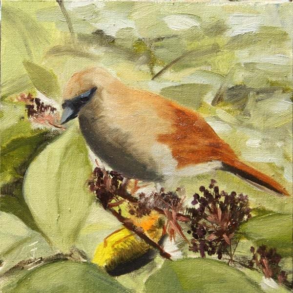 """Snack Tree"" original fine art by Jane Frederick"