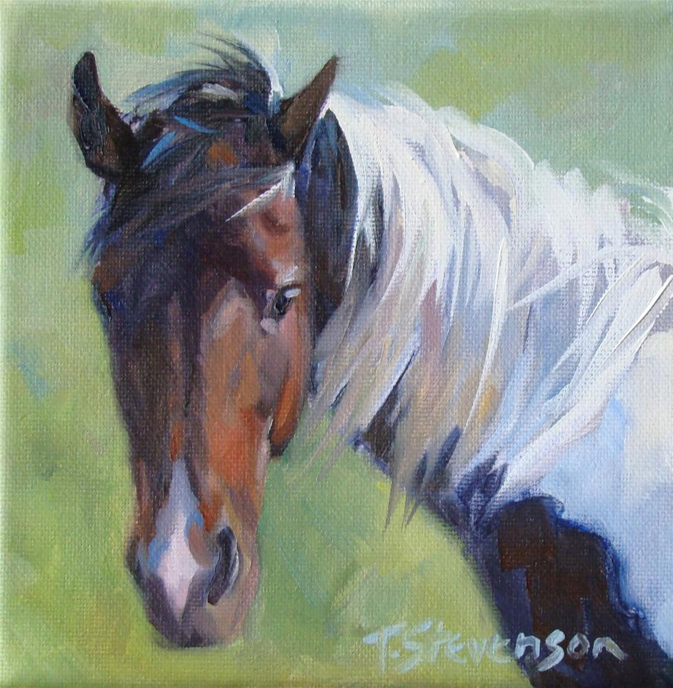"""Heads Up #19"" original fine art by Trish Stevenson"