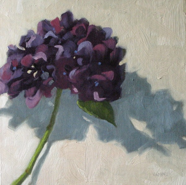 """One purple Hydrangea"" original fine art by Claudia Hammer"
