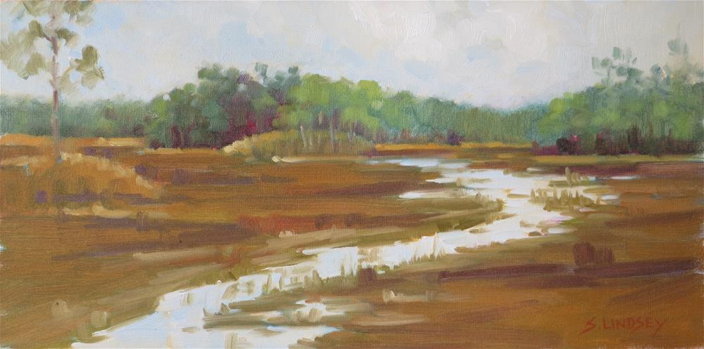 """Grassy Waters"" original fine art by Susan Lindsey"