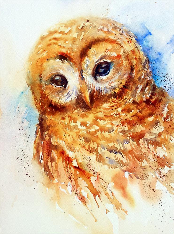 """Barred Owl"" original fine art by Arti Chauhan"