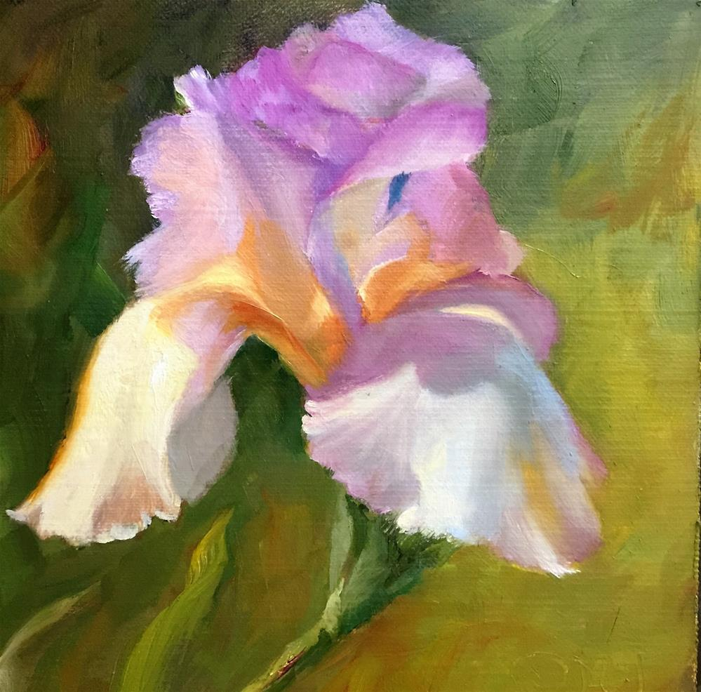 """Garden Iris"" original fine art by Dorothy McLennan"