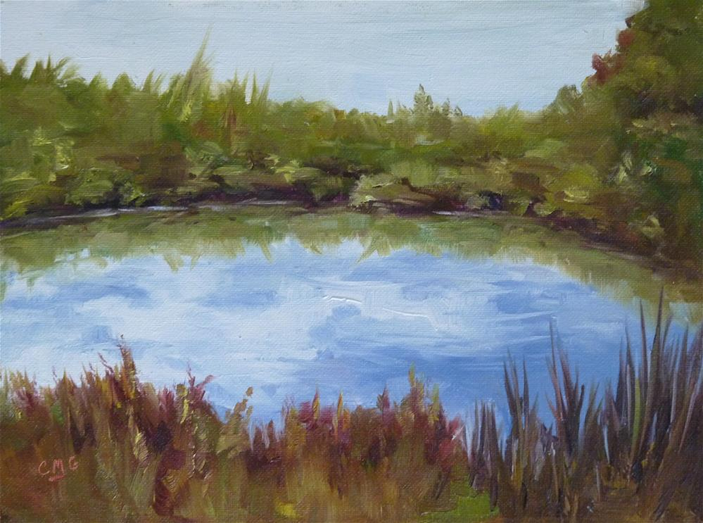 """Wetlands Reflections"" original fine art by Cindy Greene"