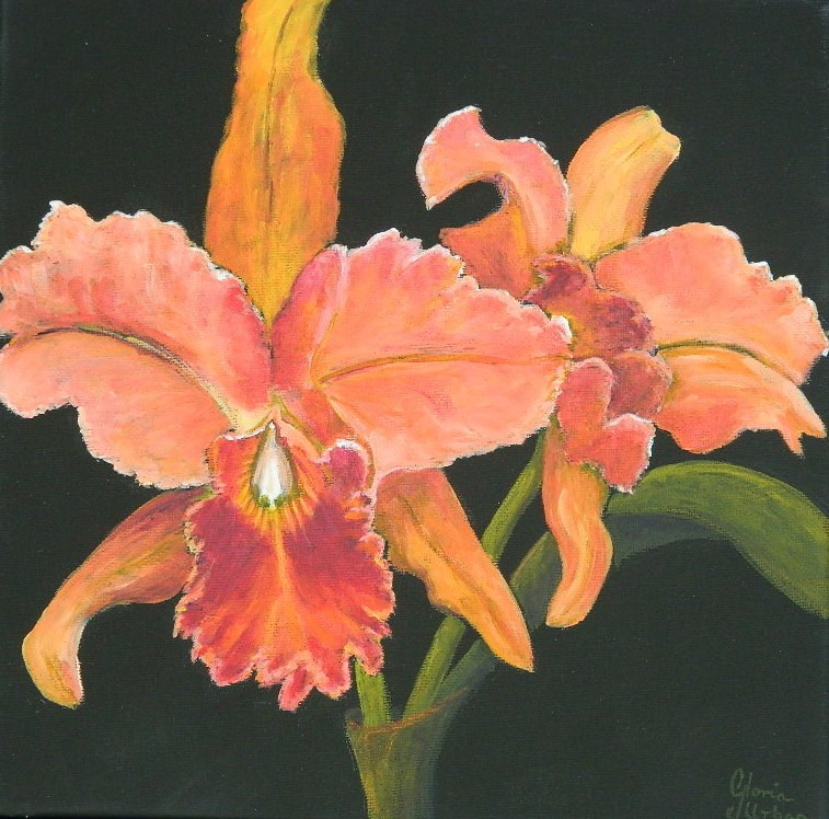 """Orchid #1"" original fine art by Gloria Urban"