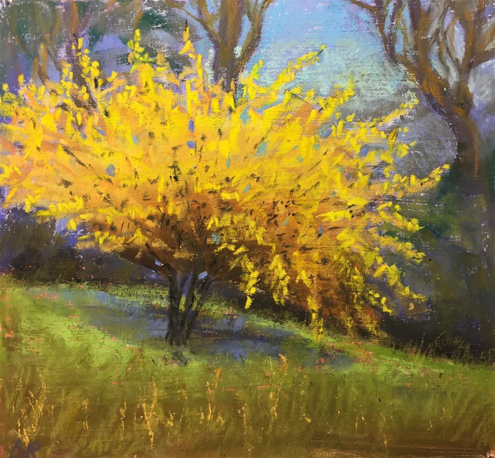 """Forsythia bush"" original fine art by Natasha Ramras"