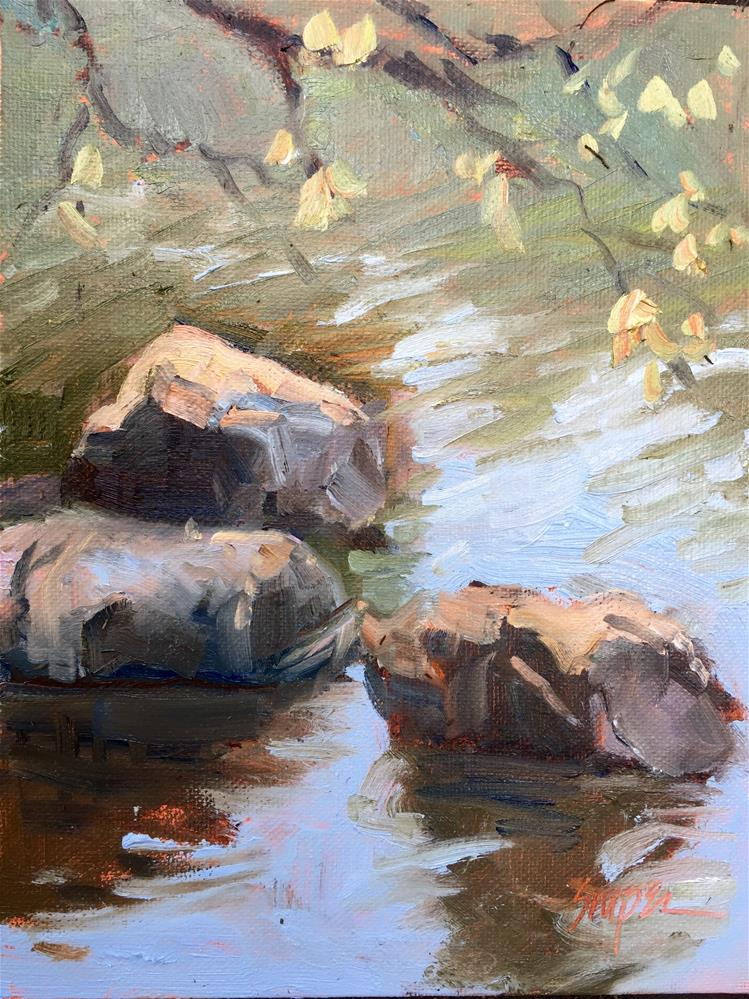 """Rocks at the Duck Pond, Arboretum, Charlotte, NC"" original fine art by Connie Snipes"