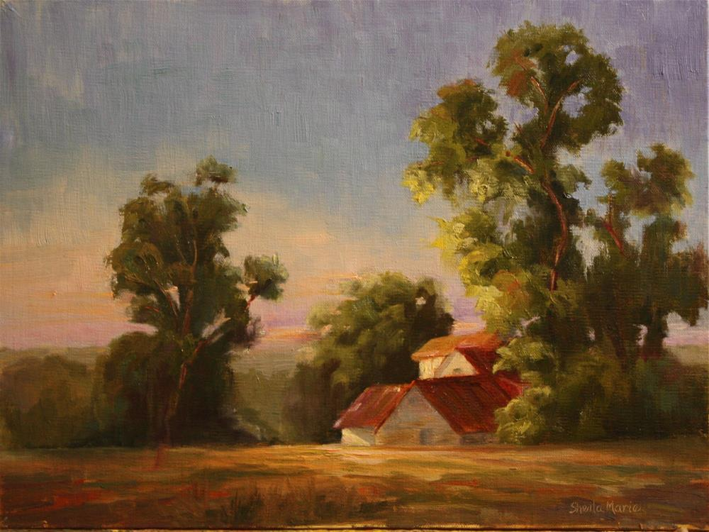 """Midmorning Light Across Wynetka Farms"" original fine art by Sheila Marie"